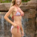 denise_richards_bikini_4